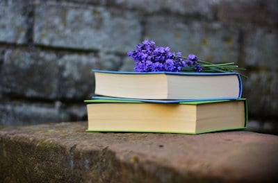 Photo of two books and purple flowers on a rock wall